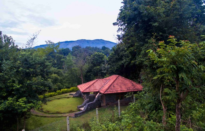 Beautiful view of anaikatti forest guest house