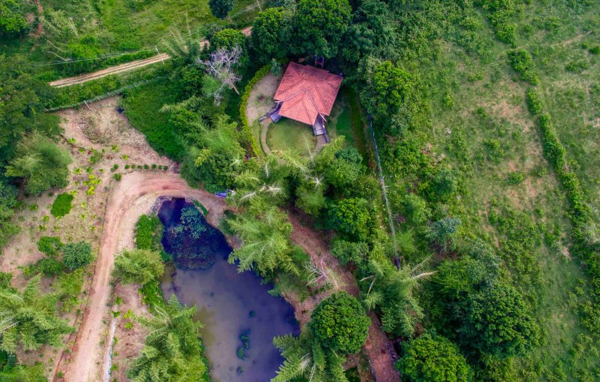 Drone view of anaikatti forest rest house