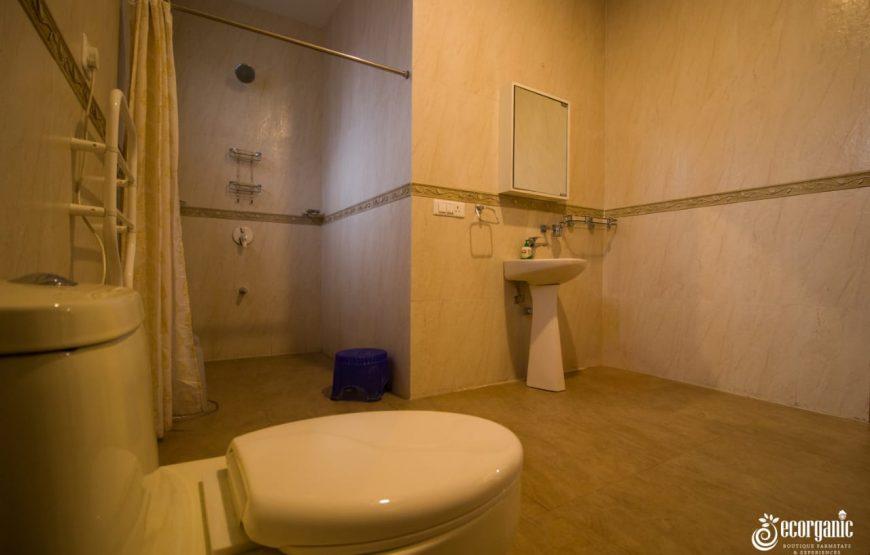 luxurious toilet odthe luxurious toilets
