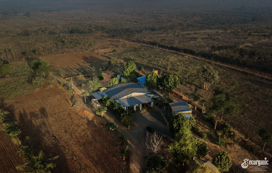 top view of forest stay in bandipur