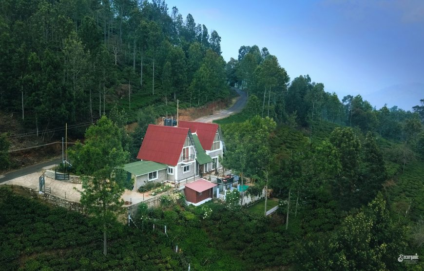 beautiful view of Vue Kotagiri homestay