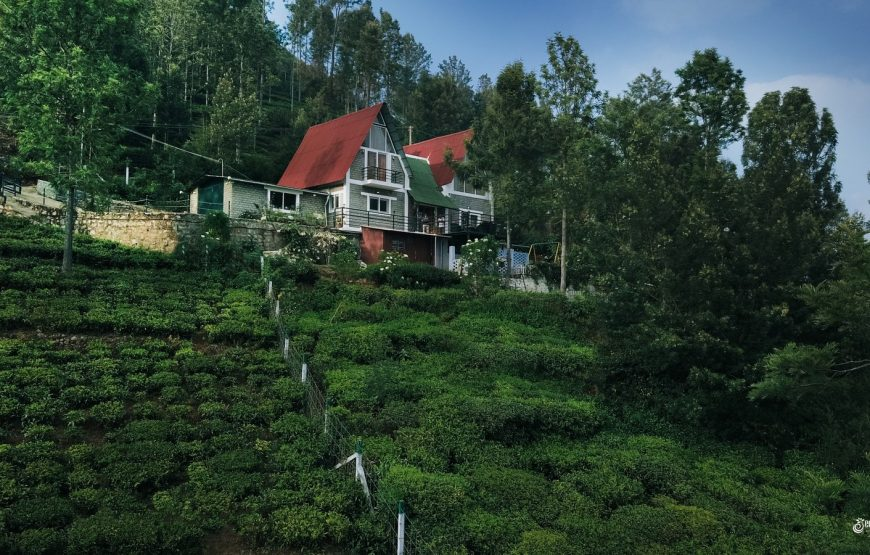 Vue Kotagiri stay located in tea estate