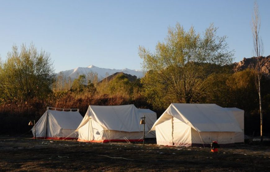 camping in leh ladakh