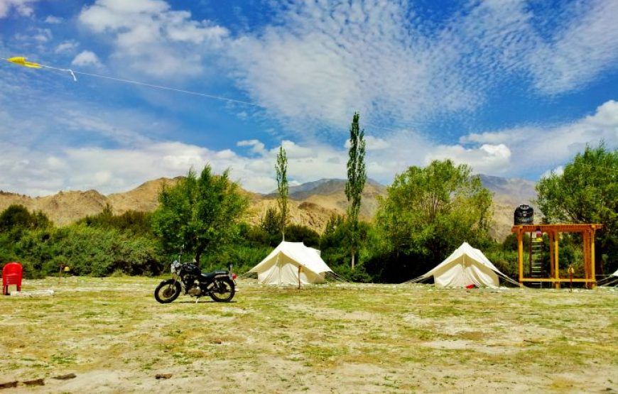 bike and tents at camping in leh