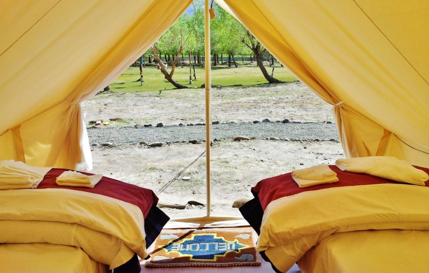 inside the luxury tents in leh ladakh