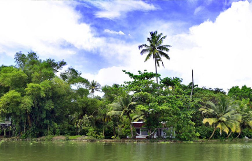 a beautiful view of Alleppey Homestay Backwaters with clear sky
