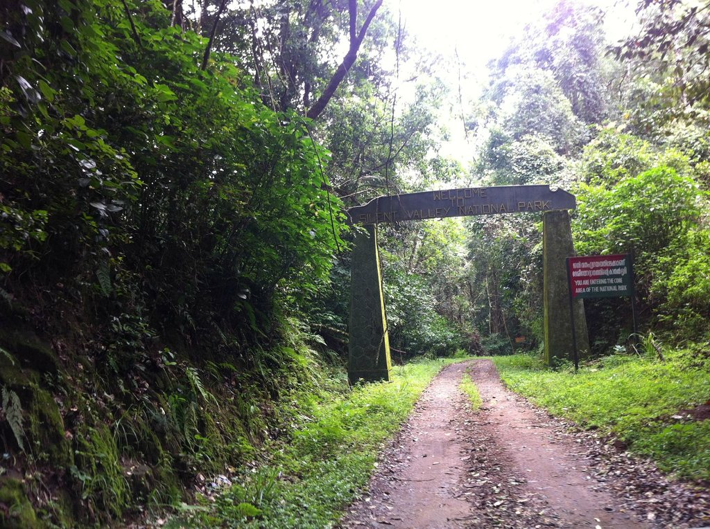 silent valley entrance nearby aattapadi forest stay